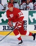 Yan Golubovski AHL Adirondack Red Wings 8x10 Photo