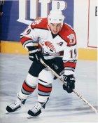 Andrew Brunette AHL Portland Pirates 8x10 Photo