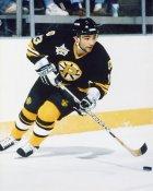 Grigari Panteleen AHL Providence Bruins 8x10 Photo