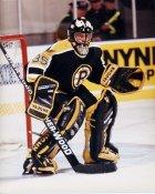 Scott Bailey AHL Providence Bruins 8x10 Photo