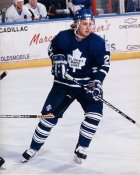 Zednek Nedved AHL St. John's Maple Leafs 8x10 Photo