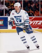 Dave Roberts AHL Worcester Ice Cats 8x10 Photo