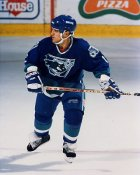 Shawn Heaphy AHL Worcester Ice Cats 8x10 Photo