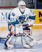 Wayne Cowley AHL Worcester Ice Cats 8x10 Photo
