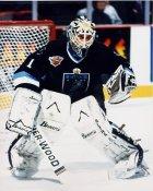Mike Greenlay IHL Atlanta Knights 8x10 Photo