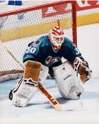 Allan Bester IHL  Orlando Solar Bears 8x10 Photo