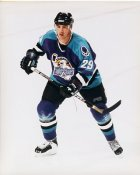 Brad Tilley IHL  Orlando Solar Bears 8x10 Photo