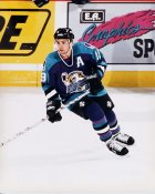Mark Beafait IHL  Orlando Solar Bears 8x10 Photo