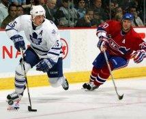 Thomas Kaberle Toronto Maple Leafs 8x10 Photo