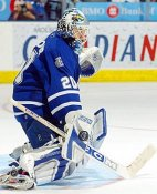 Ed Belfour Toronto Maple Leafs LIMITED STOCK 8x10 Photo