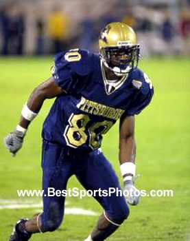 Antonio Bryant Pittsburgh Panthers 8X10 Photo