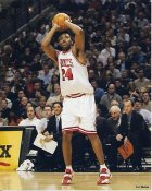 Othella Harrington Chicago Bulls 8X10 Photo LIMITED STOCK