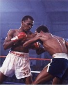 Sugar Ray Leonard  Boxing 8x10 Photo