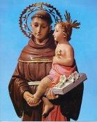 St. Anthony 8x10 Photo