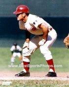 Pete Rose LIMITED STOCK Cincinnati Reds 8X10 Photo
