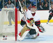 Dominik Hasek Ottawa Senators 8x10 Photo