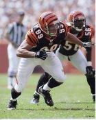 David Pollack Cincinnati Bengals 8X10 Photo