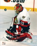 Patrick Lalime Ottawa Senators 8x10 Photo