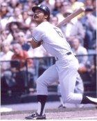 Roy White New York Yankees 8X10 Photo