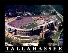 A1 Bobby Bowden Field Aerial Doak Campbell Stadium 8x10 Photo