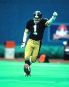 Gary Anderson Pittsburgh Steelers 8x10 Photo  LIMITED STOCK