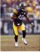 Quincy Morgan  Pittsburgh Steelers 8x10 Photo