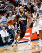 Jamaal Tinsley Indiana Pacers 8x10 Photo LIMITED STOCK