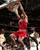 Tyson Chandler Chicago Bulls 8X10 Photo