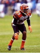 Keiwan Ratliff Cincinnati Bengals 8X10 Photo