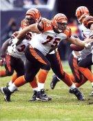 Scott Kooistra Cincinnati Bengals 8X10 Photo