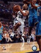 Damon Stoudamire Memphis Grizzlies 8X10 Photo LIMITED STOCK