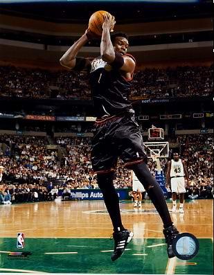 Samuel Dalembert Philadelphia 76ers 8X10 Photo
