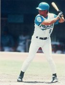Bret Barberie Florida Marlins 8X10 Photo