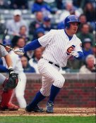 Mark Bellhorn Chicago Cubs 8X10 Photo