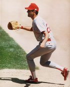 Will Clark LIMITED STOCK Texas Rangers 8X10 Photo