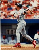 Royce Clayton St. Louis Cardinals 8X10 Photo