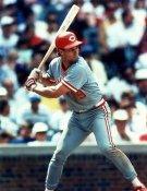 Bill Doran Cincinnati Reds 8X10 Photo