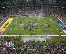 Steelers 2006 Super Bowl 40 Celebration Ford Field LIMITED STOCK 8x10 Photo