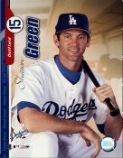 Shawn Green Los Angeles Dodgers 8X10 Photo