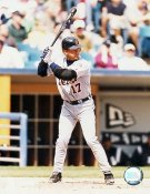 Shane Halter LIMITED STOCK Detroit Tigers 8X10 Photo
