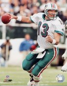 Dan Marino  Miami Dolphins LIMITED STOCK 8X10 Photo