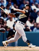 Stan Javier Oakland Athletics 8X10 Photo
