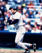 Tim Naehring Boston Red Sox 8x10 Photo