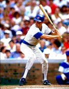 Mark Grace Chicago Cubs 8X10 Photo
