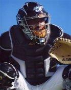 Bengie Molina LIMITED STOCK Toronto Blue Jays 8X10 Photo