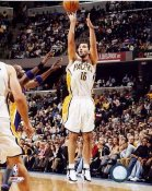 Peja Stojakovic Indiana Pacers 8x10 Photo LIMITED STOCK