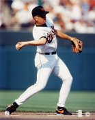 Cal Ripken Jr. Baltimore Orioles 8X10 Photo
