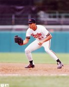 David Segui Baltimore Orioles 8X10 Photo