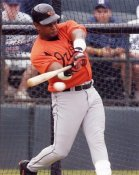Sammy Sosa Baltimore Orioles 8X10 Photo