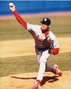 Todd Stottlemyer St. Louis Cardinals 8x10 Photo